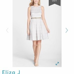 Belted Eyelet Lace Fit & Flare Dress